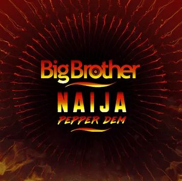 Nigerians React To BBNaija 'Housemate' Defrauding Girlfriend