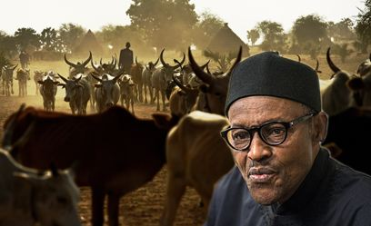 Breaking: Buhari Bows To Pressure, Suspends Ruga