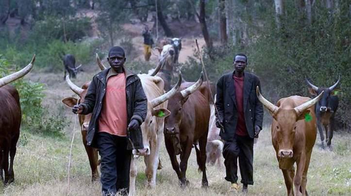 fulani-herdsmen-in-kaduna.jpg