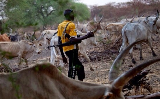 Breaking: Herdsmen Attack Imo Community, Shoot Sporadically